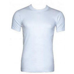 Minerva Men T-Shirt Classic Close Neckline 18100