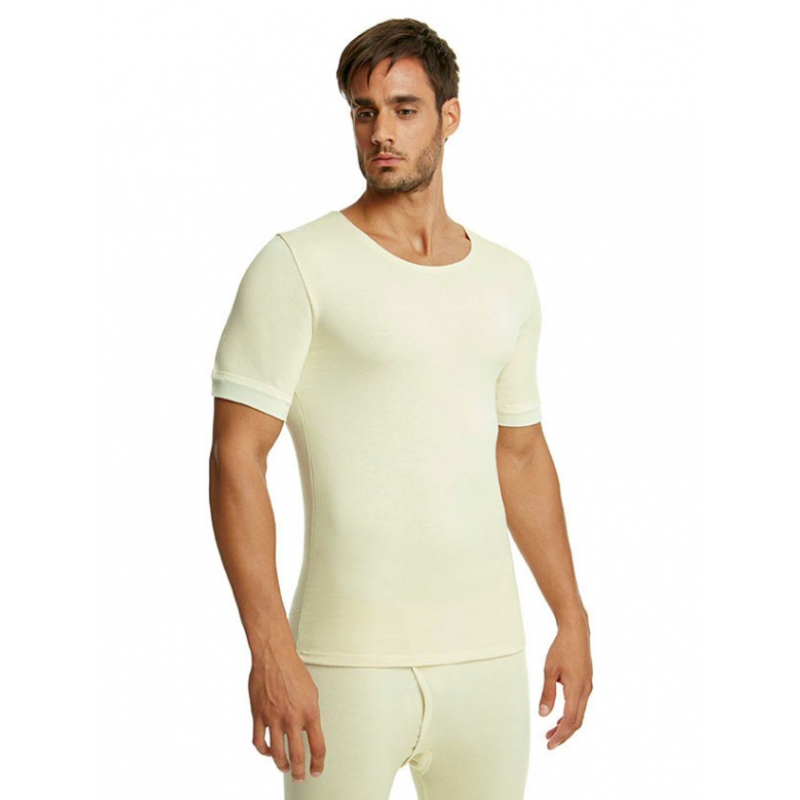 Palco Men T-Shirt Wool-Cotoon (291) 6/512